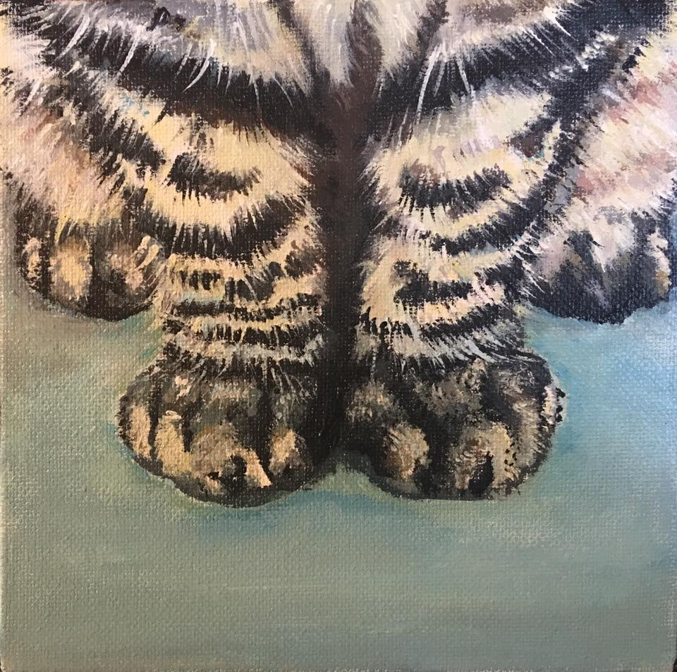 Paws - Striped Tabby